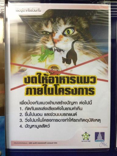 งดให้อาหารแมว ภายในโครงการ